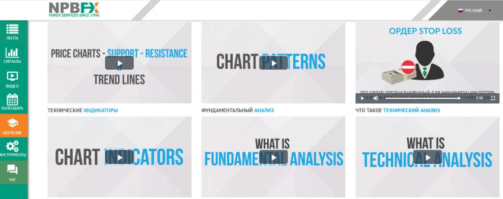 Раздел «Обучение» Аналитического портала NPBFX